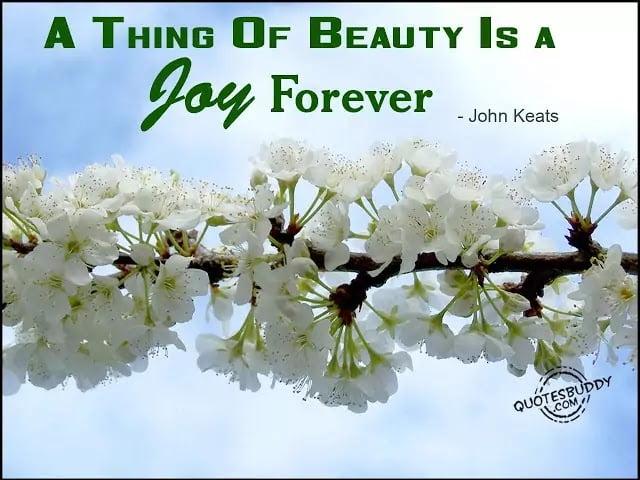 Best Quote Ever of John Keats
