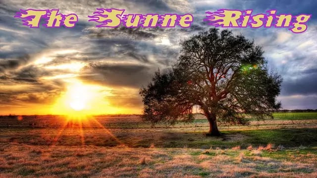 """Text & Line by Lline Annotations of Donne's """"The Sunne Rising"""""""