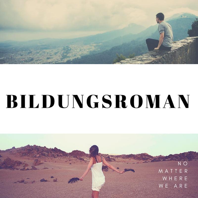 Write a Brief Note on Bildugsroman.