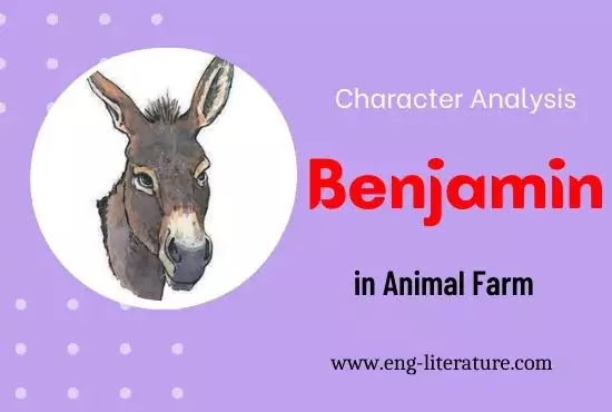 Character Analysis of Benjamin in Animal Farm