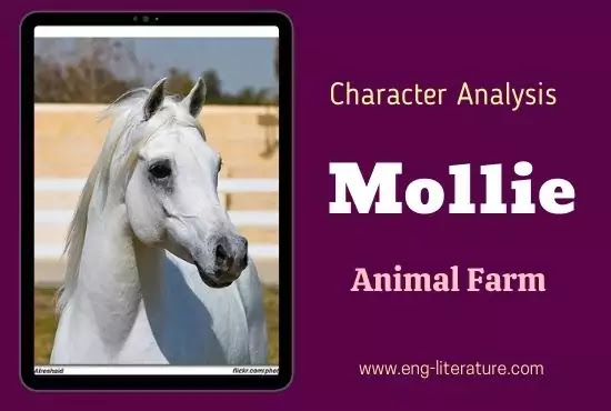 Mollie Animal Farm Character Analysis